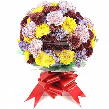 Chrysanthemum Bloom