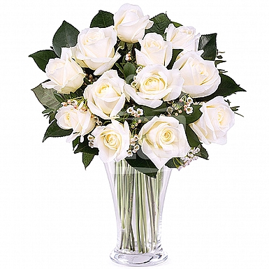 24 Imported White Roses