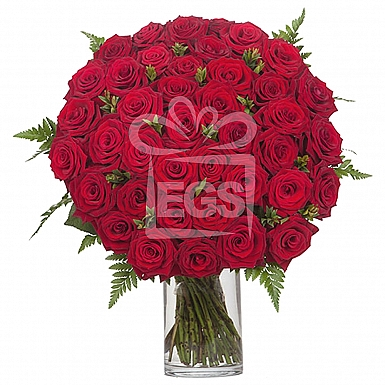 48 Imported Red Roses