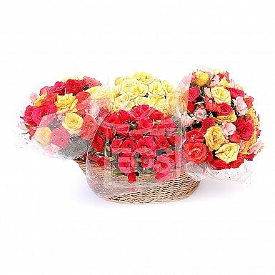 240 Mix Roses