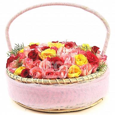 Multicolored Rose Fantasy