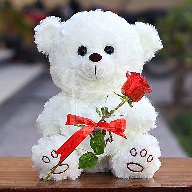Single Rose with Teddy Bear